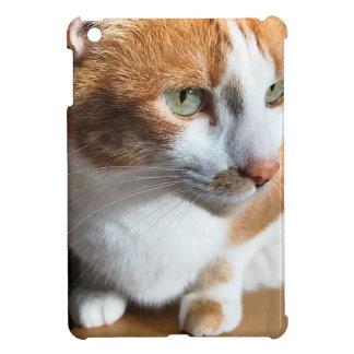 Tabby cat closeup iPad mini cover