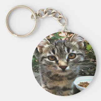 Tabby Cat Kitten Making Eye Contact Basic Round Button Key Ring
