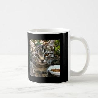 Tabby Cat Kitten Making Eye Contact Coffee Mug
