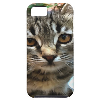 Tabby Cat Kitten Making Eye Contact iPhone 5 Cover
