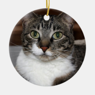 Tabby Cat Looking at You Double-Sided Ceramic Round Christmas Ornament