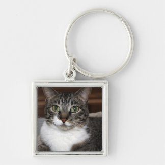 Tabby Cat Looking at You Keychain