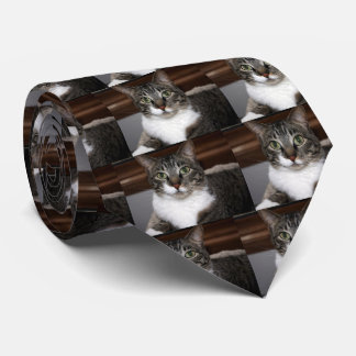Tabby Cat Looking at You Tie