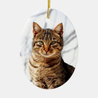 tabby cat love peace calm Double-Sided oval ceramic christmas ornament