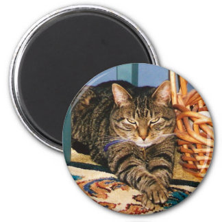 "Tabby Cat Magnet ""Content"""