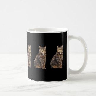 Tabby cat on black background coffee mug