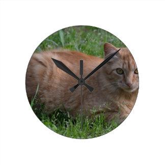 Tabby cat orange wallclocks