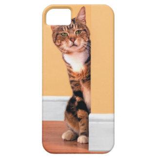 Tabby cat peeking around wall iPhone 5 cases