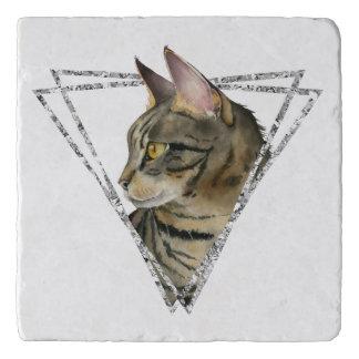 Tabby Cat Portrait with Faux Silver Glitter Frame Trivet