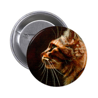 Tabby Cat Profile on Button