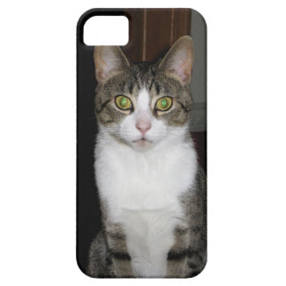 Tabby cat with big green eyes barely there iPhone 5 case