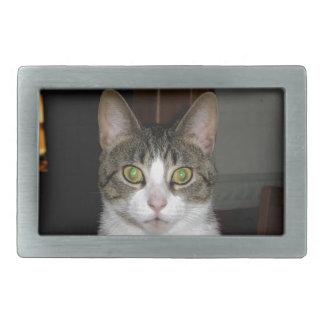 Tabby cat with big green eyes rectangular belt buckles