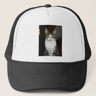 Tabby cat with big green eyes trucker hat