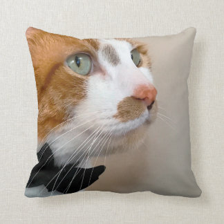 Tabby cat with bow tie cushion