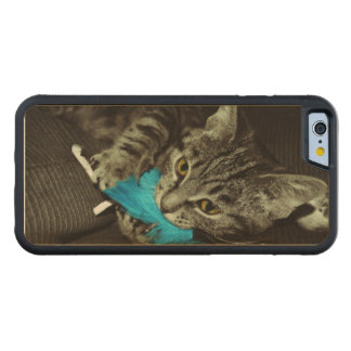 Tabby Cat with Feather by Shirley Taylor Maple iPhone 6 Bumper Case