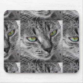 Tabby cat with green eyes mousepad