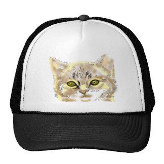 tabby kitten cap