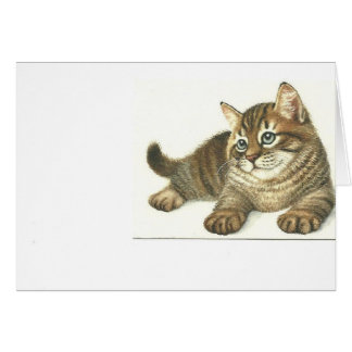Tabby Kitten Stationery Note Card