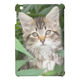 Tabby Kitten iPad Mini Case