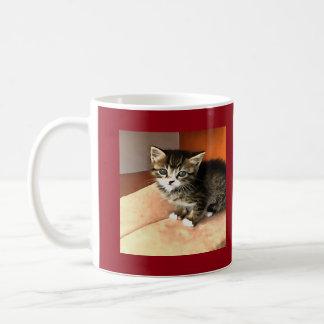 Tabby Kitten Named Miss Pip Squeak Coffee Mug