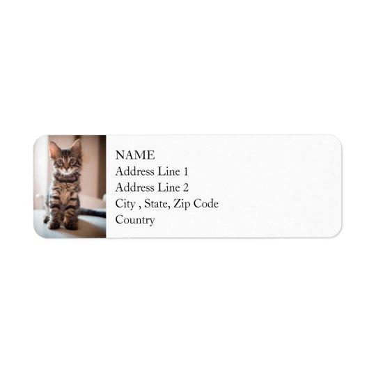 Tabby Kitten on the Table Return Address Label
