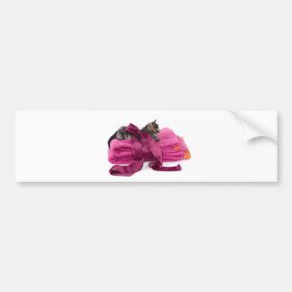 Tabby Kitten one pink towels Bumper Stickers