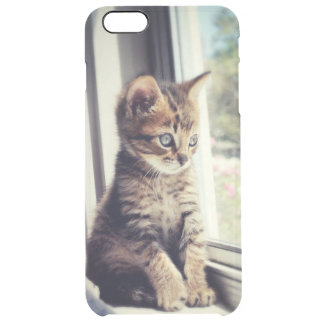Tabby Kitten Watching Clear iPhone 6 Plus Case