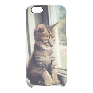 Tabby Kitten Watching Out Window Clear iPhone 6/6S Case
