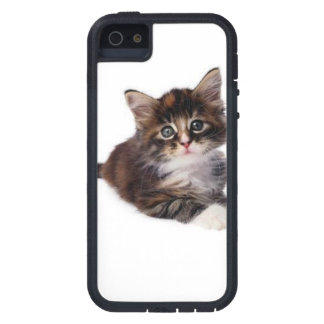 Tabby Kitty Case For The iPhone 5