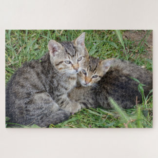 Tabby Sisters Jigsaw Puzzle
