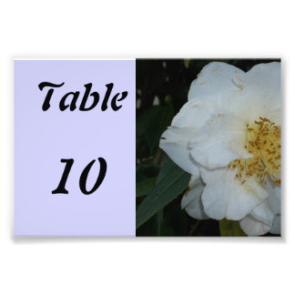 Table Number Flower Art Photo