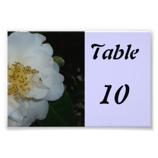 Table Number Flower Photo Art