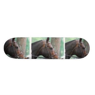 Tacked Dark Bay Horse Skateboard