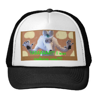 TADAAAAA!!! I was stalking you!!!! Trucker Hat