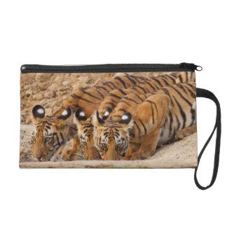 Tadoba Andheri Tiger Reserve Wristlet Clutch