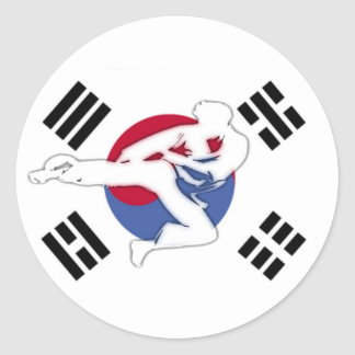 Tae Kwon Do Flyer Stickers