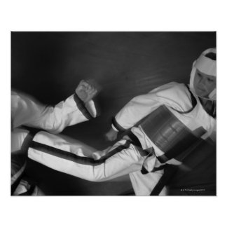 Tae Kwon Do Match Poster