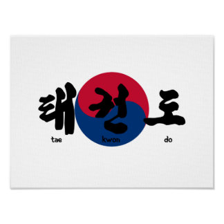Tae Kwon Do with Flag Poster