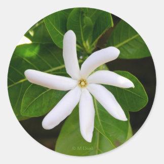 Tahiti Tiare Classic Round Sticker