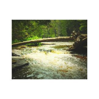 Tahquamenon Falls River Photo Art Canvas Michigan