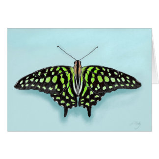 Tailed Jay Green and Black Butterfly Painting Card