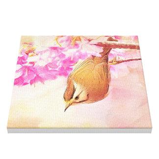 Taiwan Yuhina with Cherry Bloosom Canvas Print