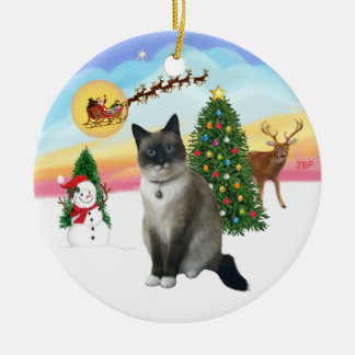 Take Off - Snow Shoe Cat Round Ceramic Decoration