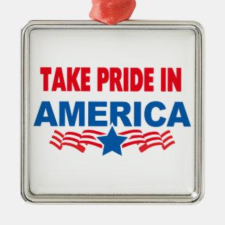 Take Pride In America Multi Pro Sel Silver-Colored Square Decoration