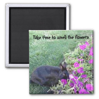 Take time to smell the flowers square magnet