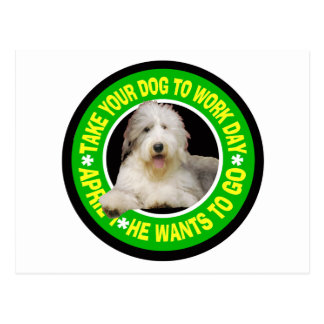 TAKE YOUR BEARDED COLLIE TO WORK DAY POSTCARD