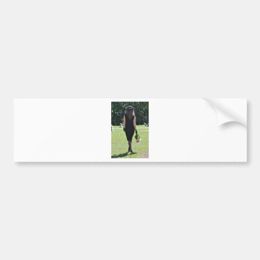 Taking a Stroll Down Memory Lane Bumper Stickers