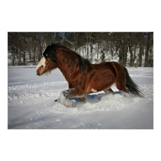 Taking It In Stride-Clydesdale in the Snow Poster