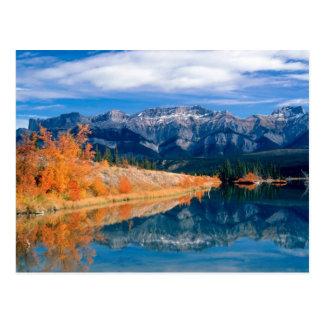 Talbot Lake Jasper Alberta, Canada Postcard
