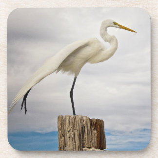 Talented Egret | Fort Myers Beach, Florida Drink Coaster